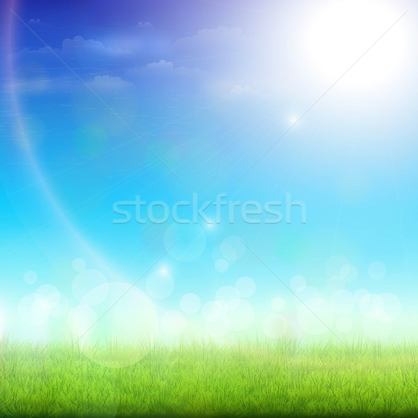 Green Meadow On a Sunny Day. Stock photo © TarikVision