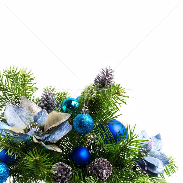 Christmas background with silk poinsettias isolated on white, co Stock photo © TasiPas