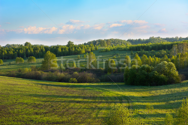 Summer sunset over beautiful hills landscape Stock photo © TasiPas
