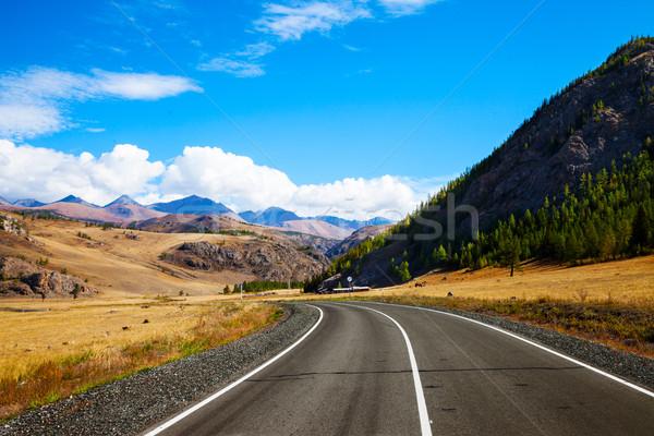 Tájkép vidéki aszfalt út préri hegyek Stock fotó © TasiPas