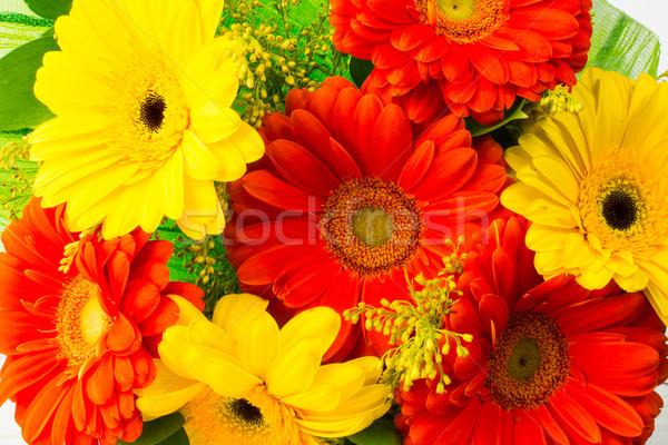 Sarı kırmızı buket tebrik çiçekler tebrik kartı Stok fotoğraf © TasiPas