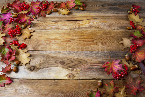 Thanksgiving background with berries, acorn and fall oak leaves  Stock photo © TasiPas
