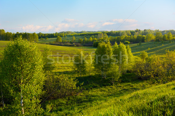 美しい 丘 風景 空 草 ストックフォト © TasiPas