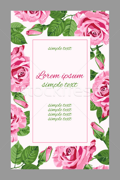 Vector retro greeting with pink roses  Stock photo © TasiPas