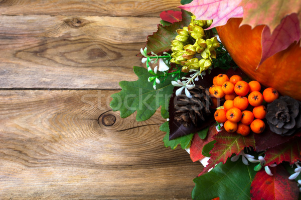 Thanksgiving greeting with rowan, cones and leaves Stock photo © TasiPas