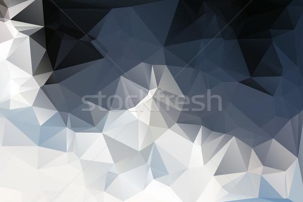 белый серый черный низкий аннотация дизайна Сток-фото © TasiPas
