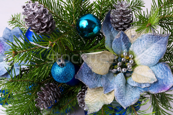 Christmas arrangement with fir branches and blue silk poinsettia Stock photo © TasiPas