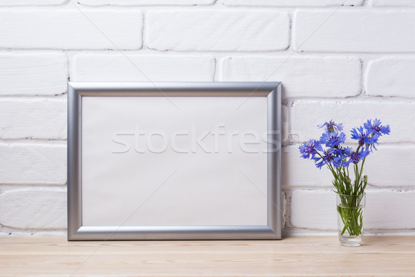 Prata paisagem quadro azul Foto stock © TasiPas