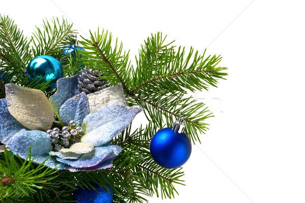 Christmas jodła blady niebieski Zdjęcia stock © TasiPas