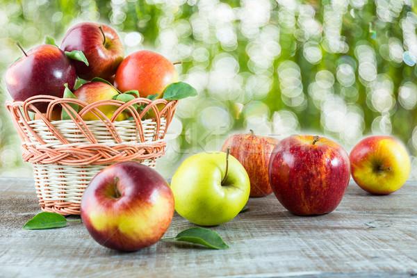 Maduro fresco maçãs mesa de madeira jardim frutas Foto stock © TasiPas