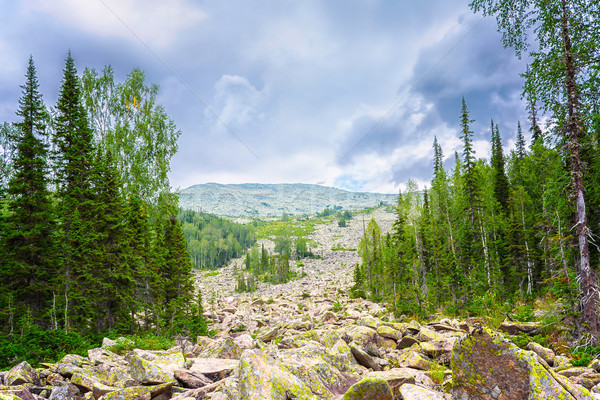 Conglomeration of rocks in the mountains, Siberia Stock photo © TasiPas