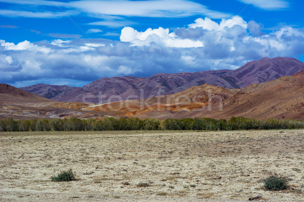 Mountain View steppe landscape Stock photo © TasiPas
