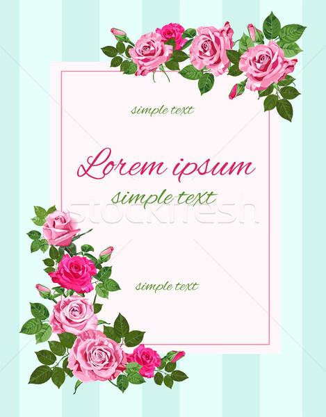 Vektor retro esküvő meghívók rózsaszín rózsák Stock fotó © TasiPas