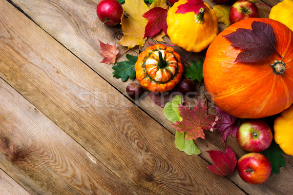 fall greeting background with yellow gourd, copy space.   Stock photo © TasiPas