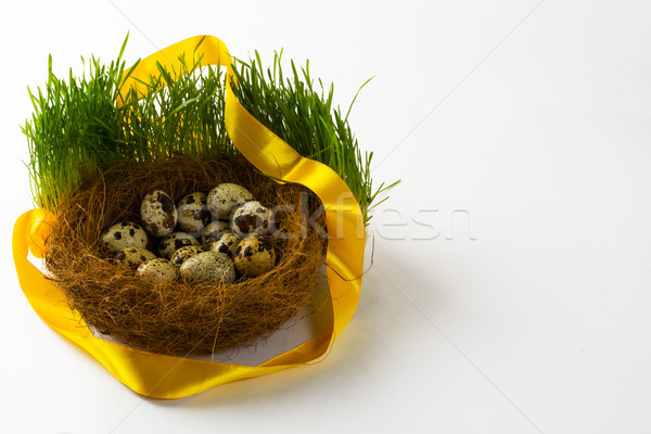 гнезда яйца птица свежие Сток-фото © TasiPas