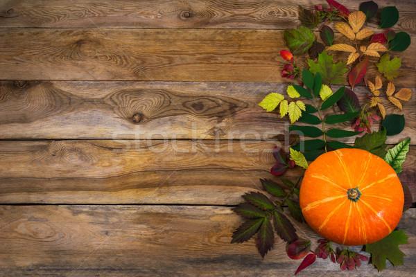 Acción de gracias hojas calabacín edad mesa feliz Foto stock © TasiPas