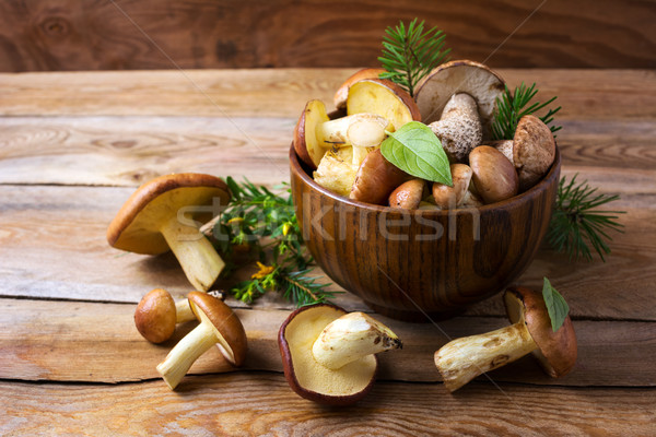 Photo stock: Forêt · champignons · bois · bol · fraîches