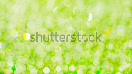 Morning dew on grass blurred green  bokeh background Stock photo © TasiPas