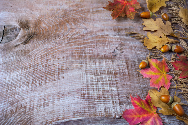 Thanksgiving  greeting with acorn and fall leaves on wooden back Stock photo © TasiPas