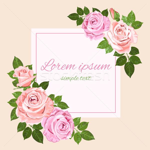 Rózsaszín bézs rózsák tér üdvözlőlap vektor Stock fotó © TasiPas