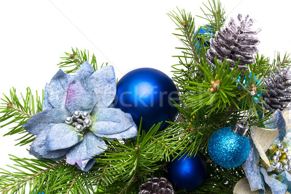 Christmas garland with silk poinsettias and fir branches on the  Stock photo © TasiPas