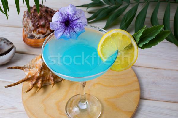 Kék trópusi tenger ünnepek koktél martini Stock fotó © TasiPas