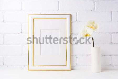 кадр окна ваза Сток-фото © TasiPas