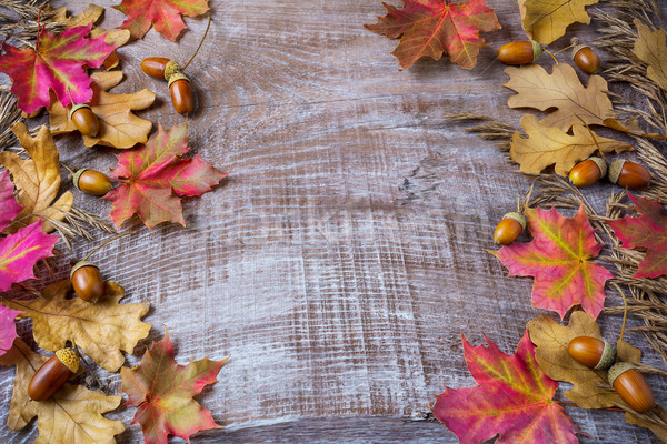 Thanksgiving  greeting background with rye, acorn and fall maple Stock photo © TasiPas
