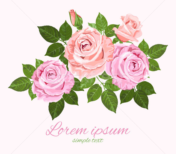 Pink and beige vector roses with green leaves  Stock photo © TasiPas