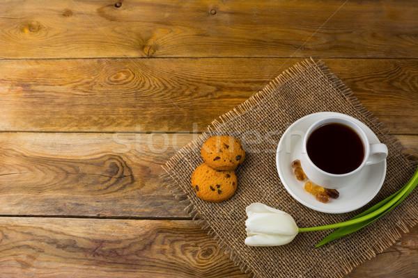 Teáscsésze fehér tulipán felső kilátás copy space Stock fotó © TasiPas