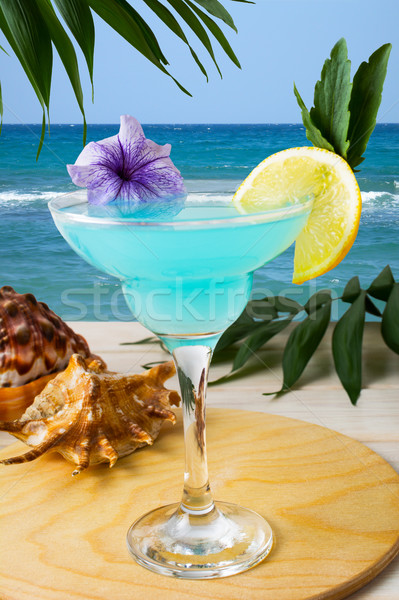 Kék koktél trópusi tengerpart jeges kozmopolita martini Stock fotó © TasiPas