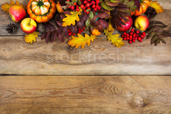 Fall background with red rowan and yellow oak leaves, copy space Stock photo © TasiPas