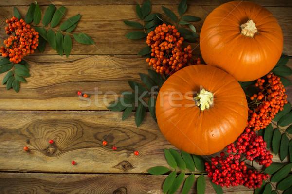pumpkins and rowan Stock photo © TasiPas