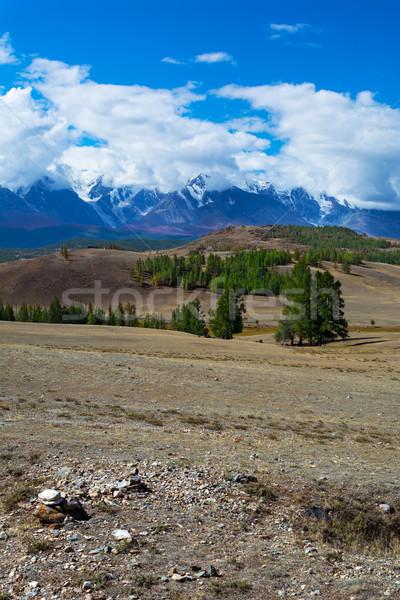 vew of the glacier in the snow-capped peaks  Stock photo © TasiPas