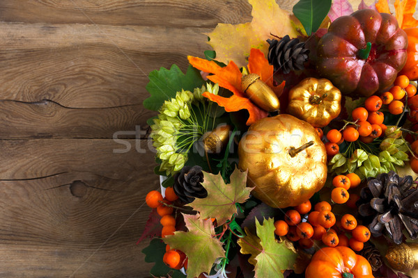 Thanksgiving greeting background with berries and cones Stock photo © TasiPas