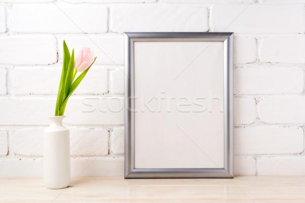 銀 フレーム ソフト ピンク ストックフォト © TasiPas