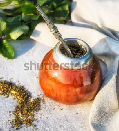 Latin amerika bitkisel çaylar eş geleneksel özel saman Stok fotoğraf © TasiPas
