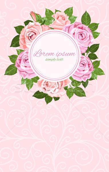 Rózsaszín bézs rózsák koszorú keret vektor Stock fotó © TasiPas