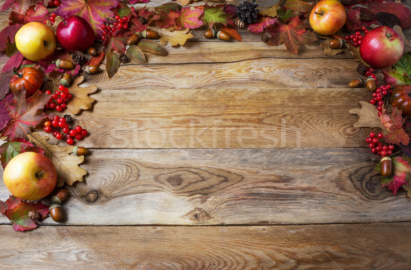 Thanksgiving concept with apples, acorns, berries and fall leave Stock photo © TasiPas