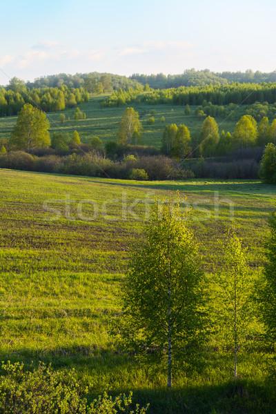 Güzel tepeler manzara dikey tepe gökyüzü Stok fotoğraf © TasiPas