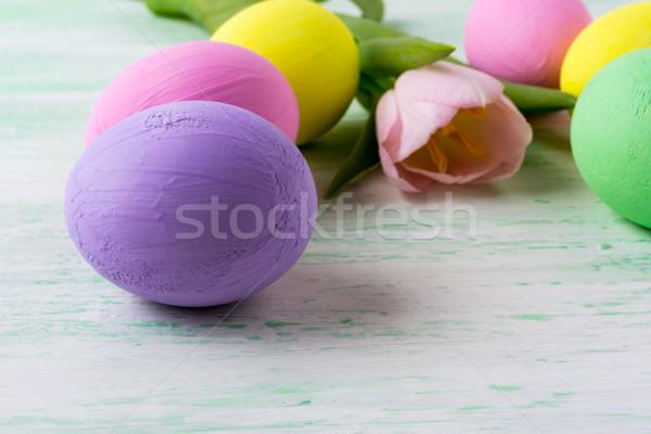 Пасху Purple яйцо розовый Tulip Сток-фото © TasiPas