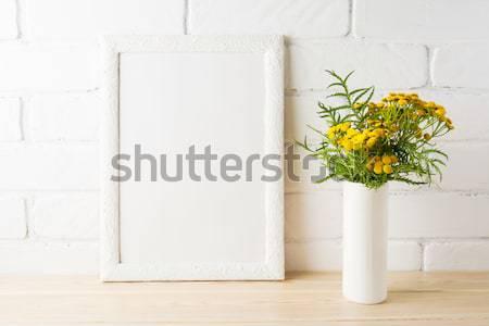 белый пейзаж кадр ромашка трава Сток-фото © TasiPas