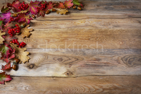 Thanksgiving  greeting with berries, acorn, fall leaves on woode Stock photo © TasiPas