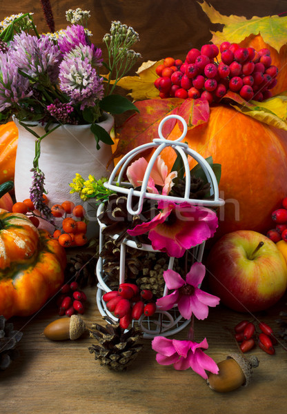 Fall table centerpiece with clover and decorated birdcage Stock photo © TasiPas