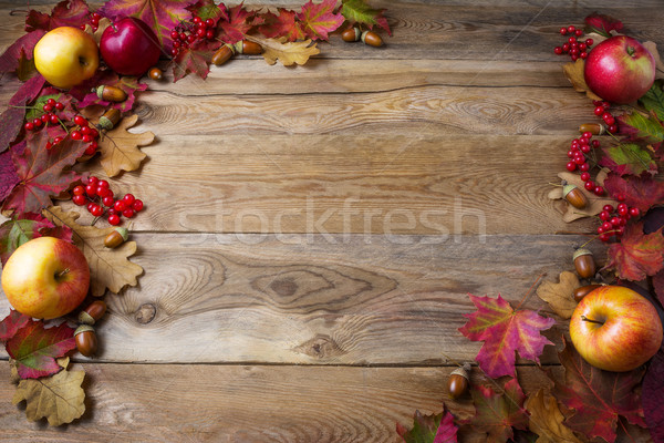 Keret almák bogyók ősz levelek sötét Stock fotó © TasiPas