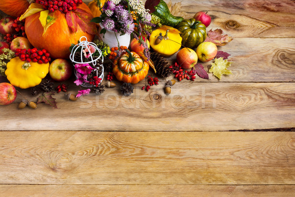 Thanksgiving background with pumpkins, decorated birdcage, copy  Stock photo © TasiPas