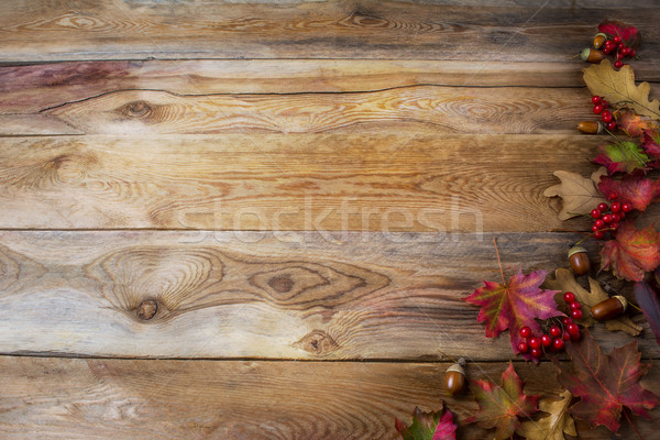 Thanksgiving  greeting background with berries, acorn and fall m Stock photo © TasiPas
