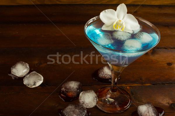 коктейль синий Martini темно ликер Сток-фото © TasiPas
