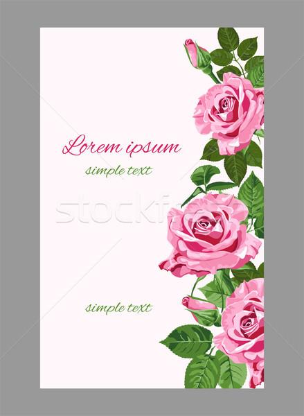 Vetor rosa rosas casamento convites cartão Foto stock © TasiPas