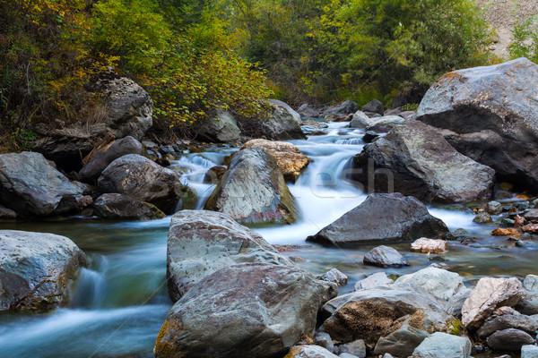 Kaskada wodospady górskich rzeki dolny góry Zdjęcia stock © TasiPas
